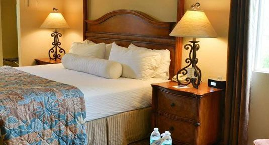 Ojai lodging - Deluxe EcoRooms with King Bed
